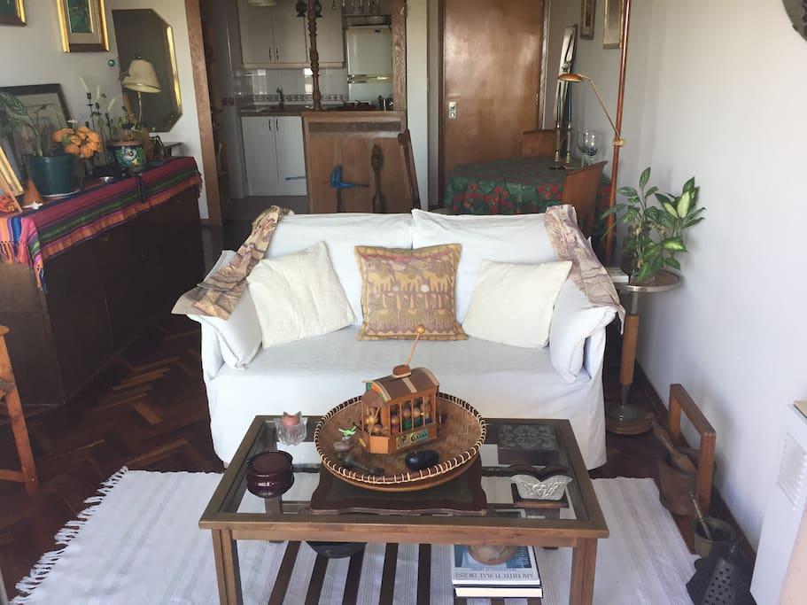 Un living acogedor / A cozy living room