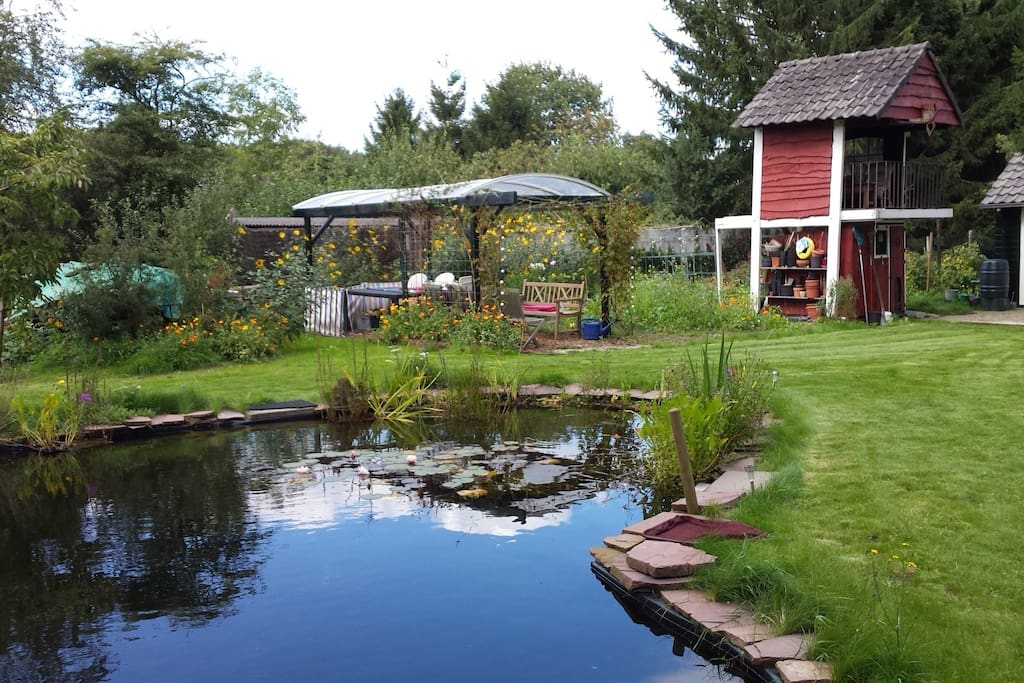 my garden with biological pond. you can swim here!