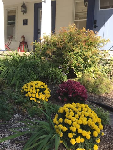 Come in the fall and see the fall mums.  Come in the winter and enjoy the lights on the porch and 3 trees.