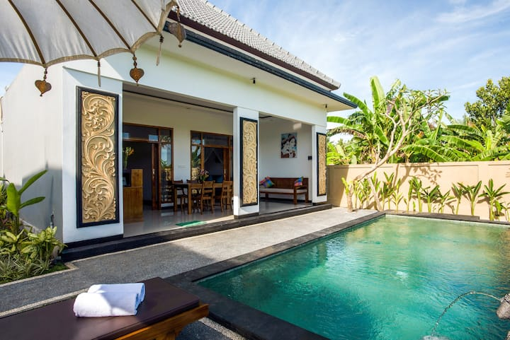 Rice View Villa: inhale Ubud air and unique vibe