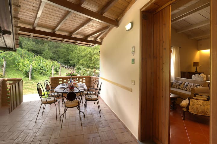 Two Bedroom family apt with POOL, WIFI.In Chianti - San Giovanni Valdarno - Appartement