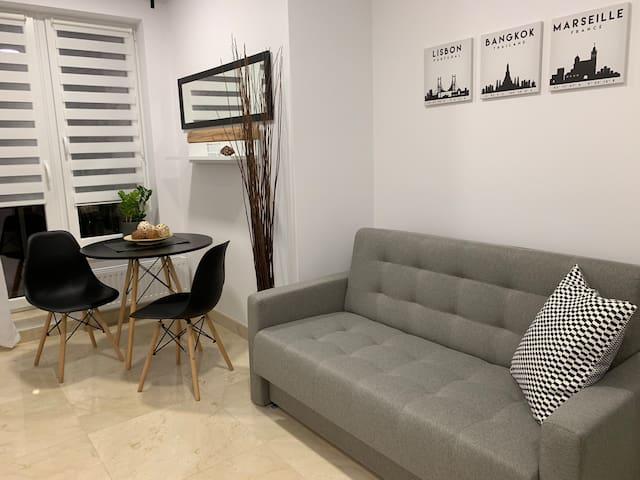 Przytulny apartament na Pułaskiego 11 a w centrum