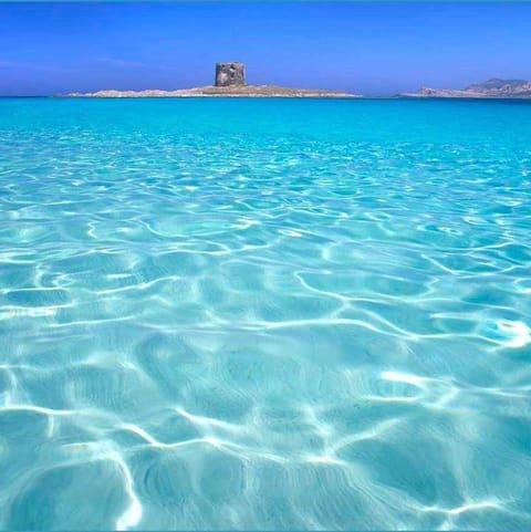 Meri jota rakastaa