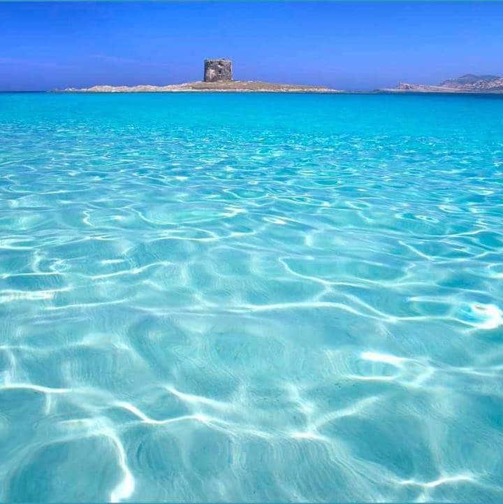 Il mare da amare