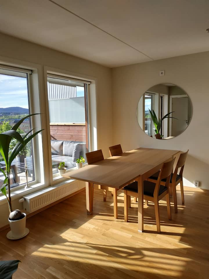 Entire apartment at lovely Fornebu