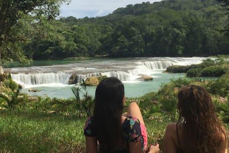Hacienda Las Cataratas - Cabaña Macuilí - Palenque - Natur-Lodge