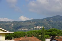 From the main terrace