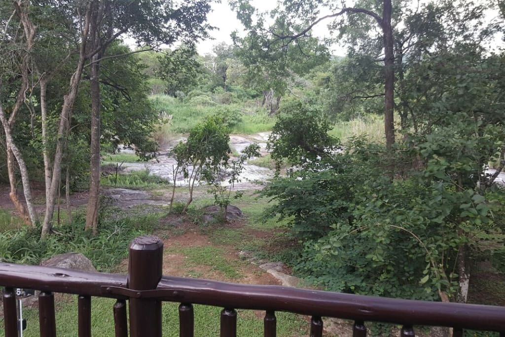 View from the house deck