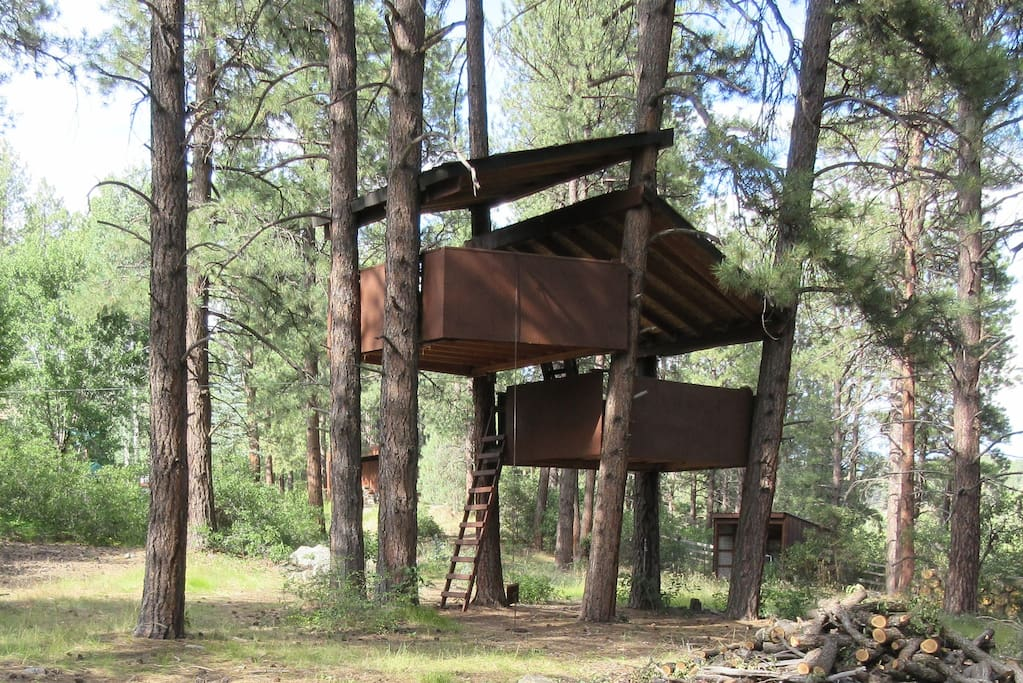Two story tree house for the kids!