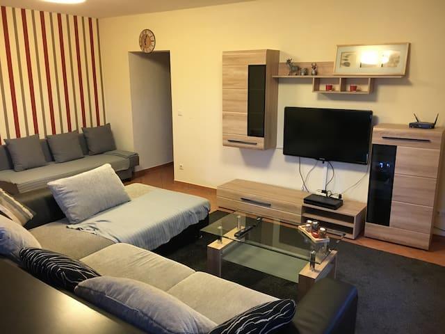 Große und ruhige Gästewohnung im Grünen - Eschau - Apartamento