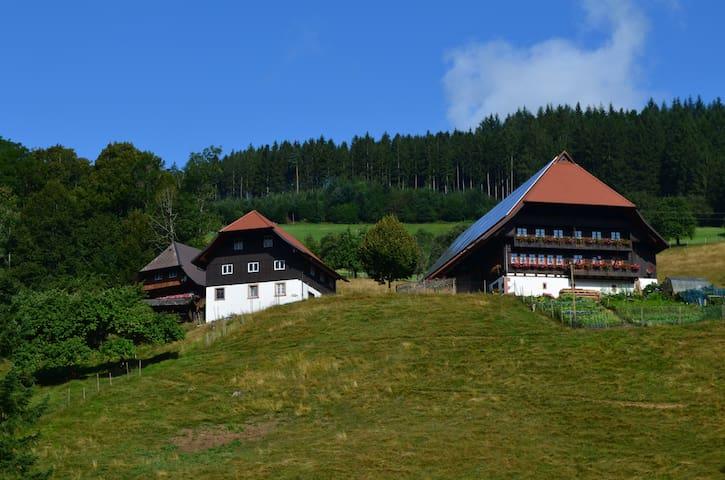 Ferien auf dem Heizenberg - Haslach im Kinzigtal - Hus