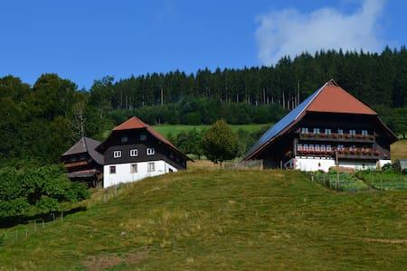 Ferien auf dem Heizenberg - Haslach im Kinzigtal