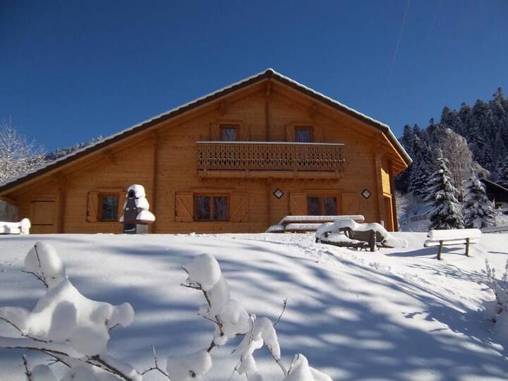 Chalet La Bresse 10 personnes proche station ski