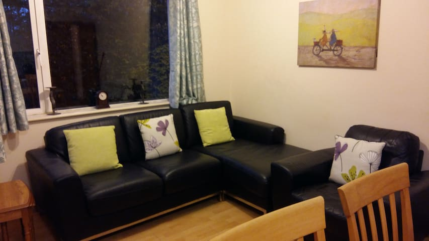Cosy 3bed apt close to City, - Galway - Apartemen