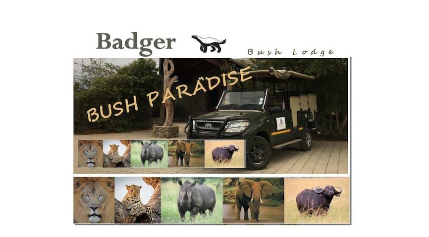 Badger Bush Lodge, Love the bush