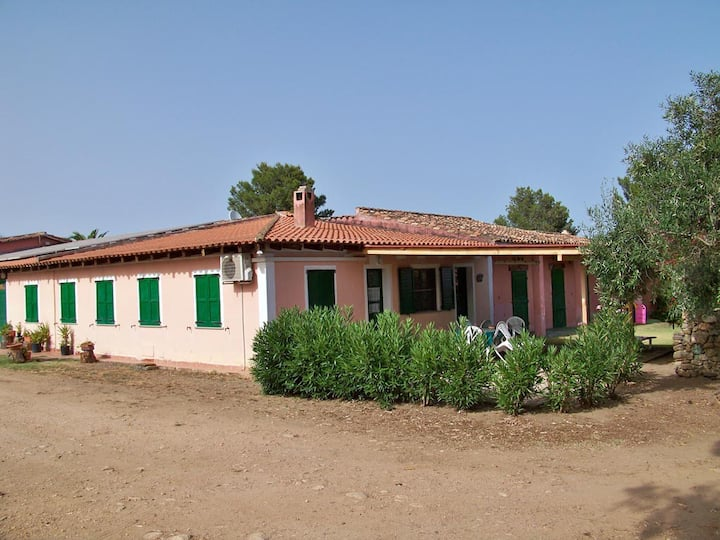 Villa Fillirea
