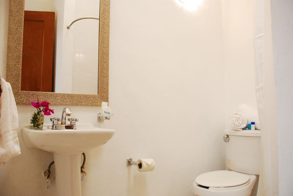 -SHARED BATHROOM- Only two of the rooms shared this full bathroom with shower.  Soap, cream, shampoo and clean towels included.