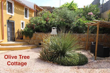 Hibiscus Retreat Adult Only- Olive Tree Cottage
