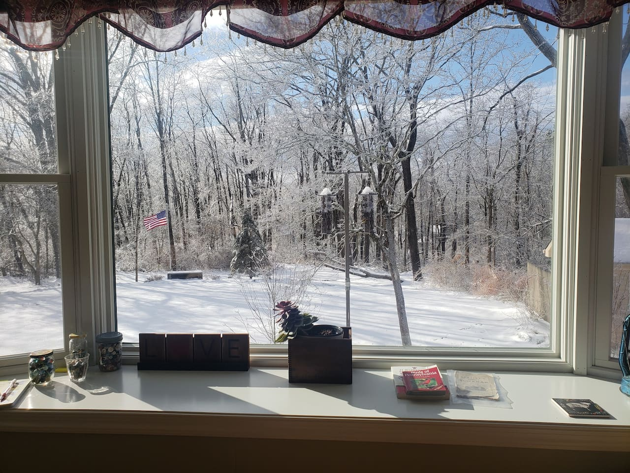 Welcome winter! Inside the oasis it is cozy and warm with nice views after an ice storm places beautiful glitter  on  everything.