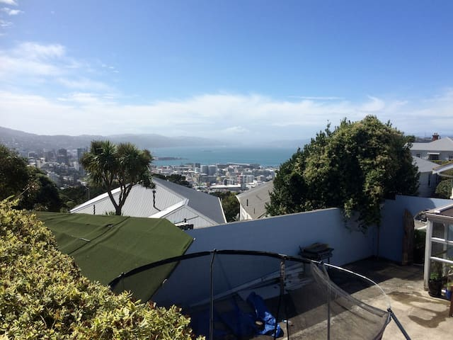 Sun, views and 15 minutes' walk to the city! - Wellington - Loft