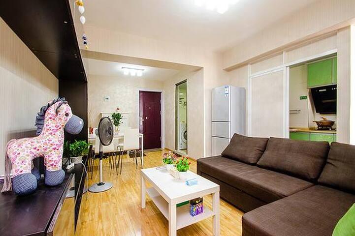罗曼公寓江汉路店循礼门地铁口/武汉广场/协和医院/汉正街精装修温馨两房 - Wuhan - Appartement