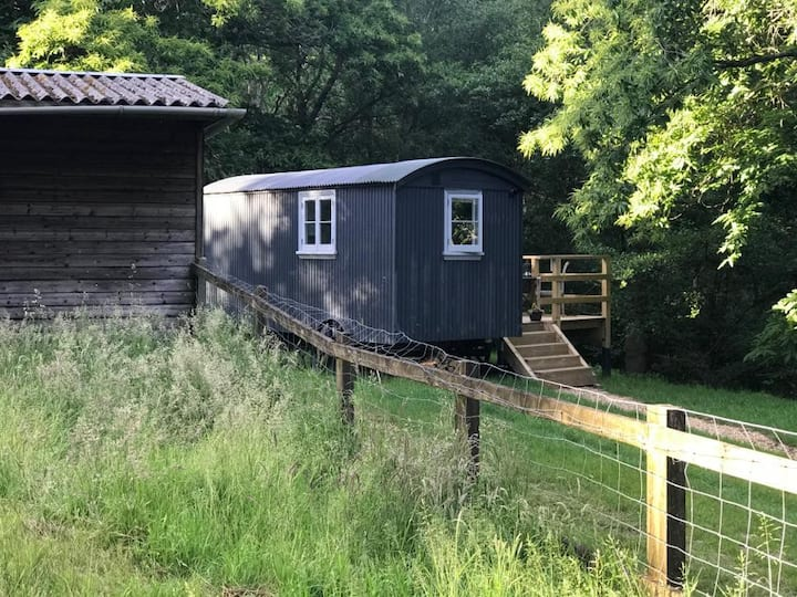 Luxurious Shepherd's Hut in tranquil setting!