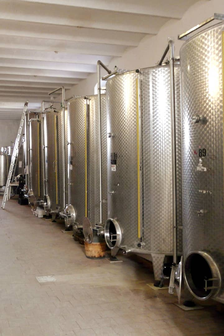 Fermentation Wine Cellar