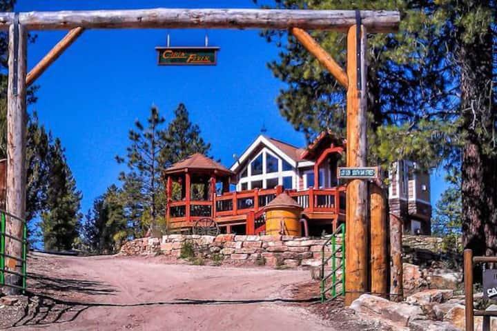 Zion Park Cabin Fever