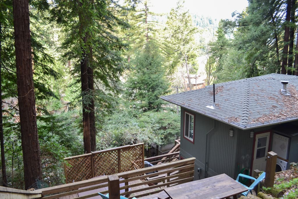 Luxury Cabin At The River 903n Cabins For Rent In