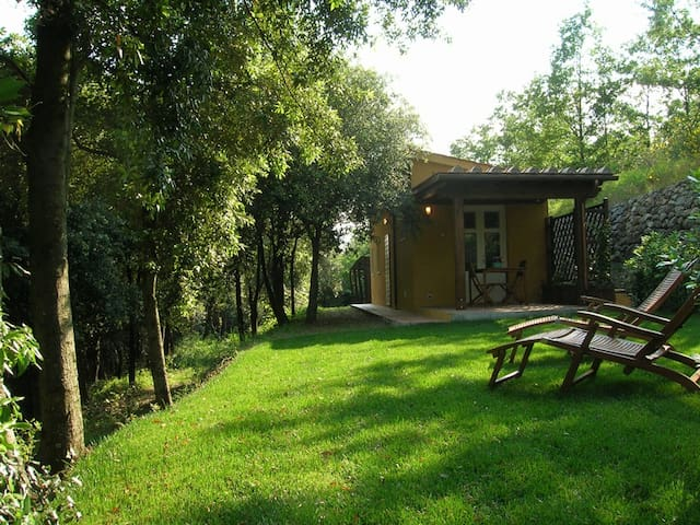 Little cottage in the woods, pool - Casciana Terme - Blockhütte