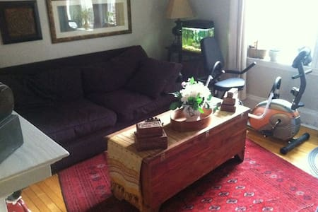 Fabulous flat sleeps 5 near Harvard