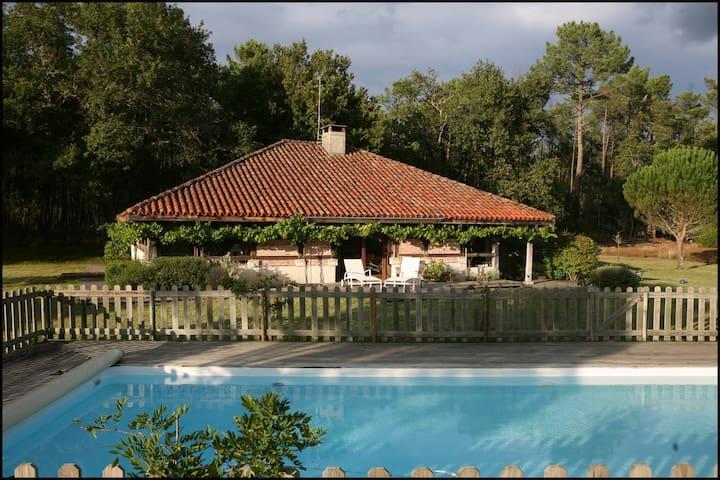 Nice villa in les Landes - Castets - Dom