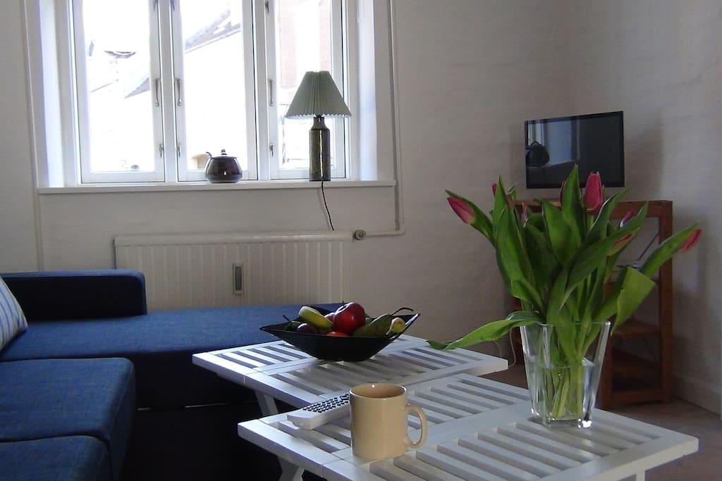 Bright livingroom, TV and DVD