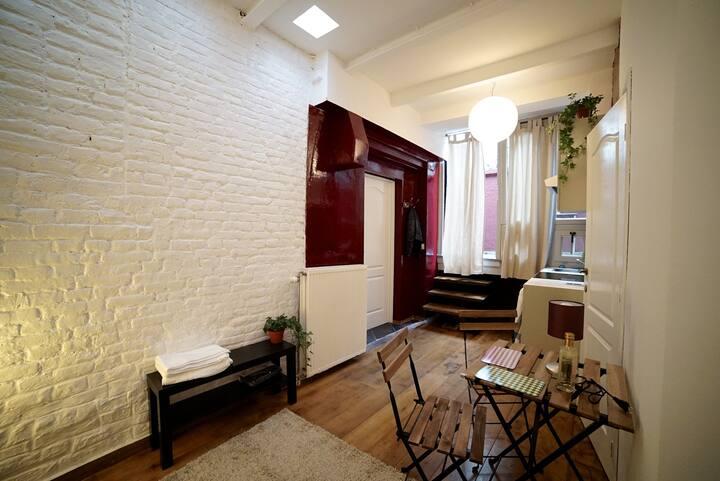 Studio/chambre au Parvis de st Pierre