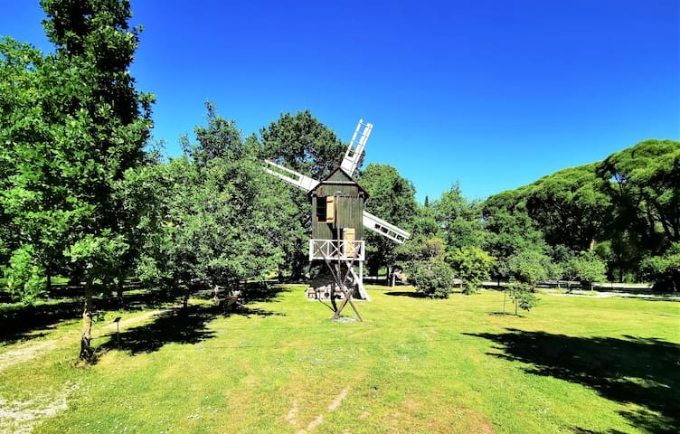 Windmill, in a beautiful and quiet location