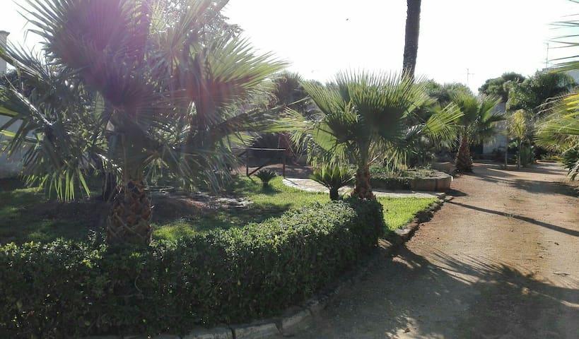 """Casa Vacanza """"il Melograno"""" - MARSALA - บ้าน"""
