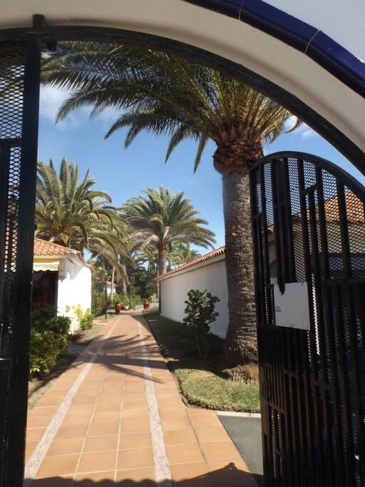 Dès la porte d'entée du complexe, c'es la végétation luxuriante qui vous accueille.