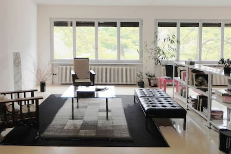 Bright Loft 115 sq with parkview - Carouge - Wohnung