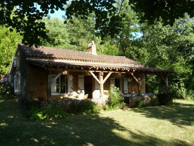 charming house with swimming pool  - Bouillac - House