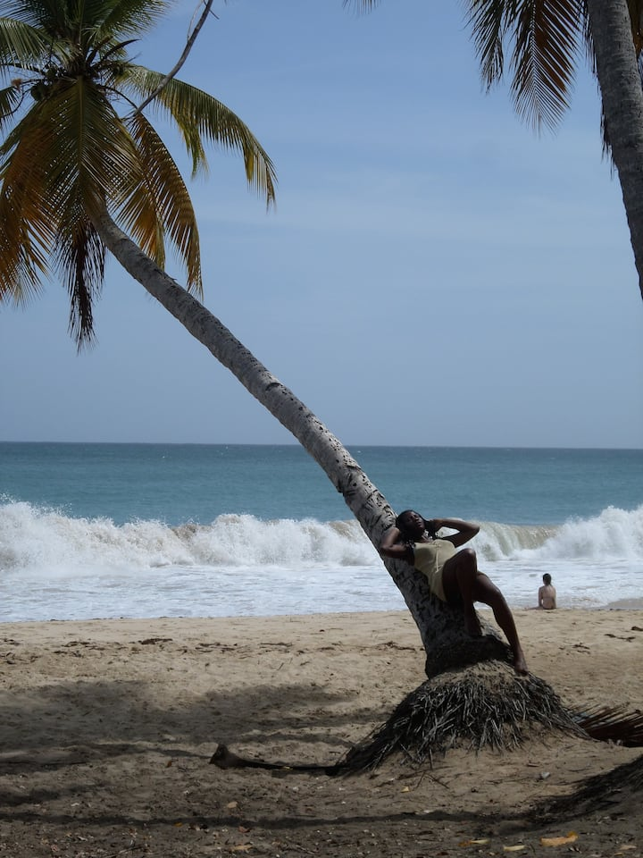 lets swim in the caribbean