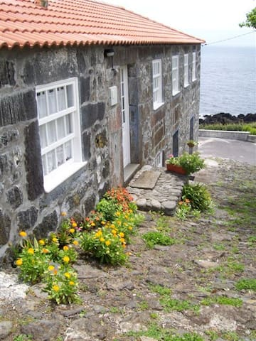 Casa do Zé - Apartamento Verde - Ilha de São Jorge  - Departamento