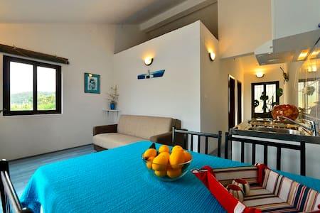 apartments Jagoda 5 (private beach) - Lastovo