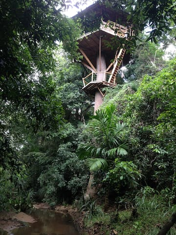 Jungle Treehouse 4 Nature Lovers - Monaragala - Casa na árvore