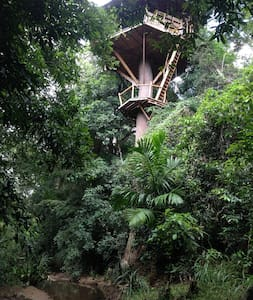 Jungle Treehouse 4 Nature Lovers - Monaragala