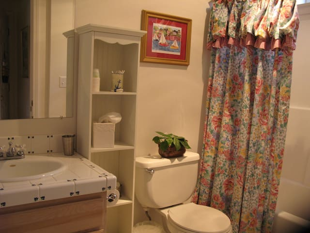 Hand painted sink tiles, bathtub and  shower.