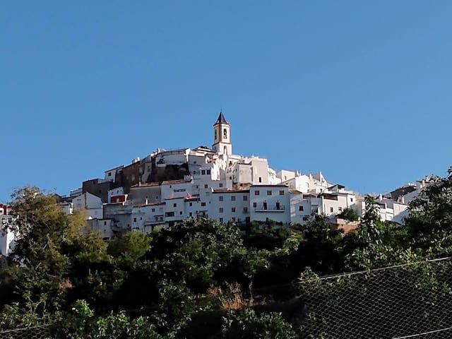 Andalusian House 320 m2 Sierra de las Nieves