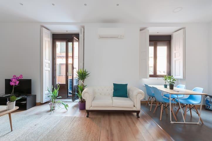 Stunning 2 bedroom flat Plaza Mayor