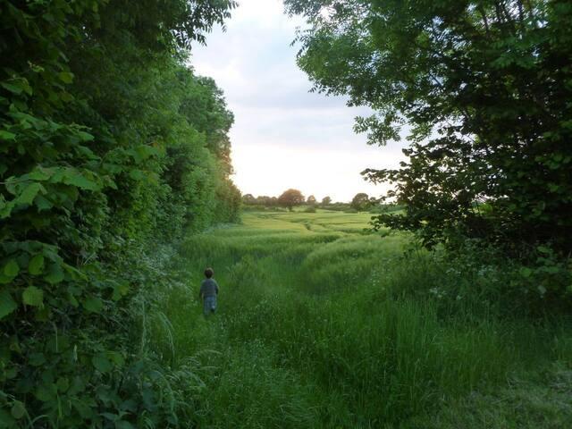 Auszeit umgeben von Wald, Feldern und Meer