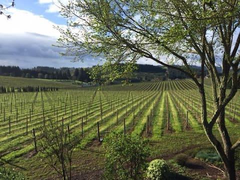 Levande vingårdar Stuga