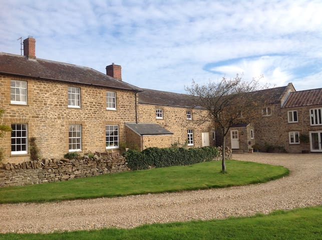 Manor Farm Studio - Nr Yeovil - Daire